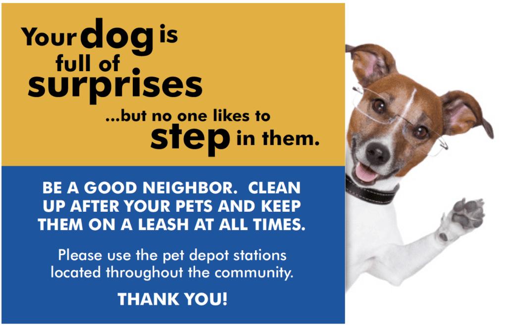 Pet Friendly Apartments