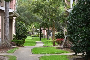 2 Bedroom Apartments for rent in Northwest Houston, Texas