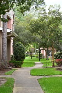 One Bedroom Apartment for rent in Northwest Houston, TX