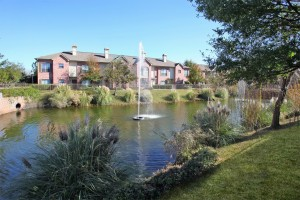 Apartment rentals in Jersey Village